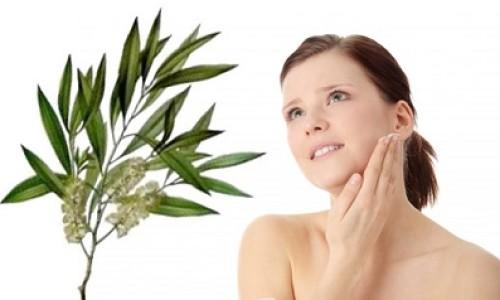Aceite de árbol de té, tratamiento 100% natural para los problemas de la piel